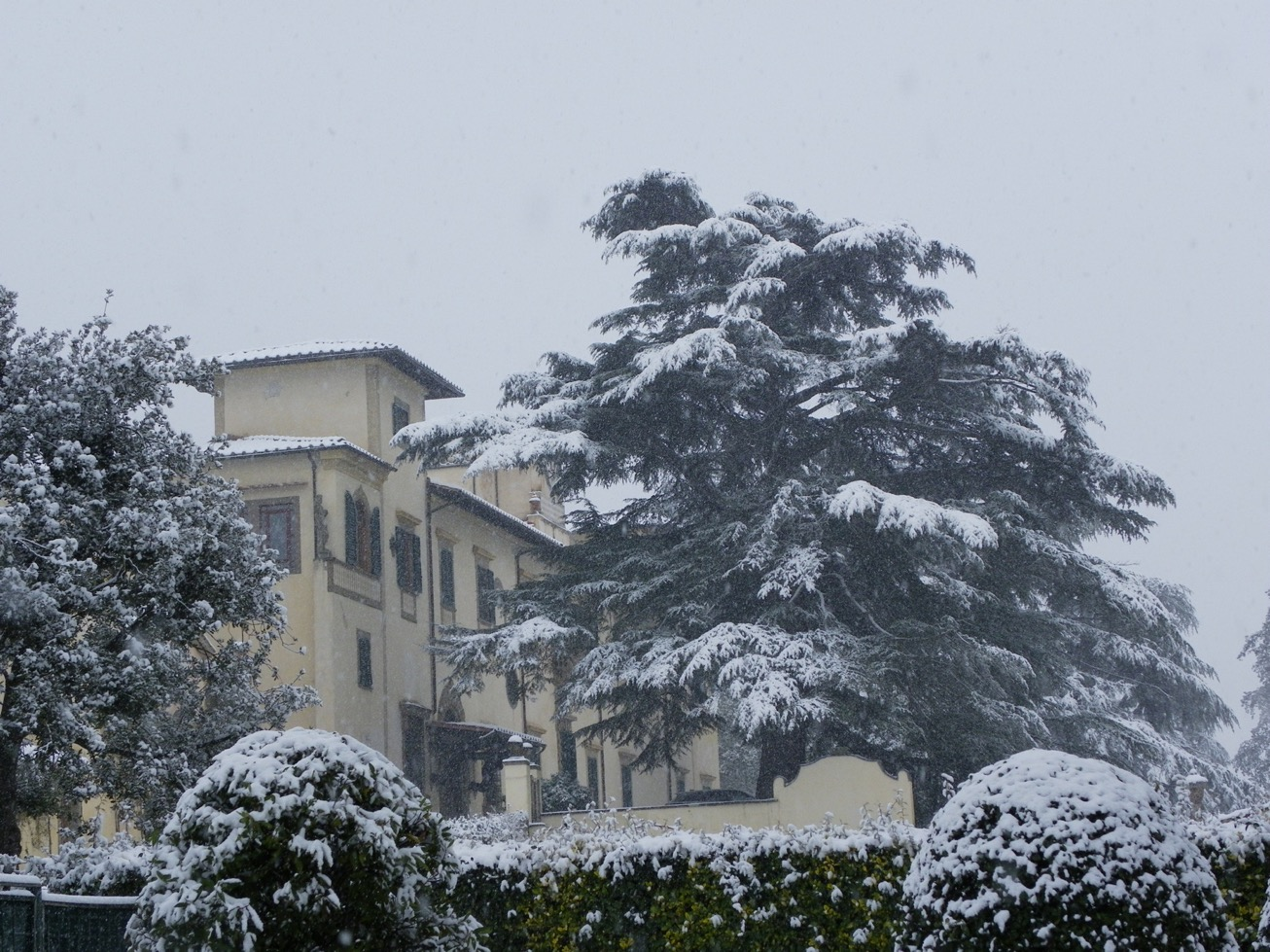 Snow in Firenze